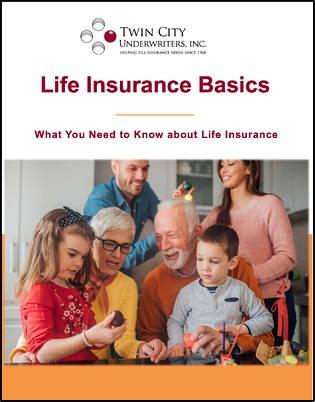 Life_Insurance_ebook_cover_pdf